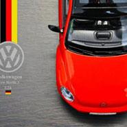 福斯 金龜 Volkswagen VW Beetle 3